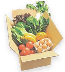 ビオマルシェの野菜セット