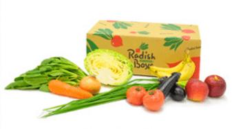 らでぃっしゅぼーやの野菜