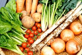 ミレーの無農薬野菜