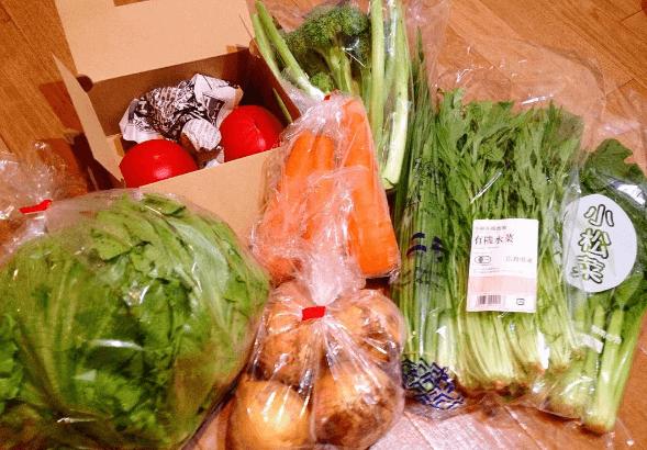 大地を守る会(旧:大地宅配)のお試しセットの野菜