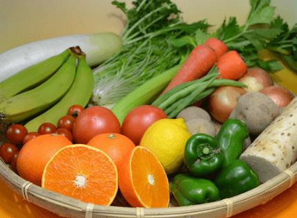 おーがにっくがーでんの「有機野菜・果物セット」