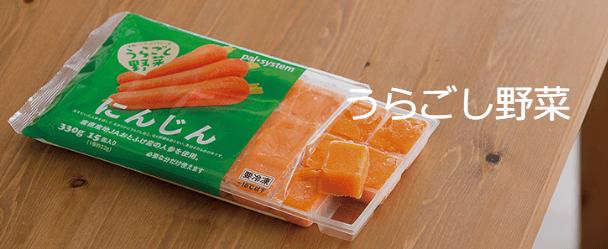 パルシステムの裏ごし野菜シリーズ「人参冷凍キューブ」