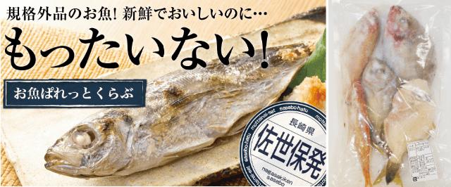 らでぃっしゅぼーやの準定期便「お魚ぱれっとクラブ」