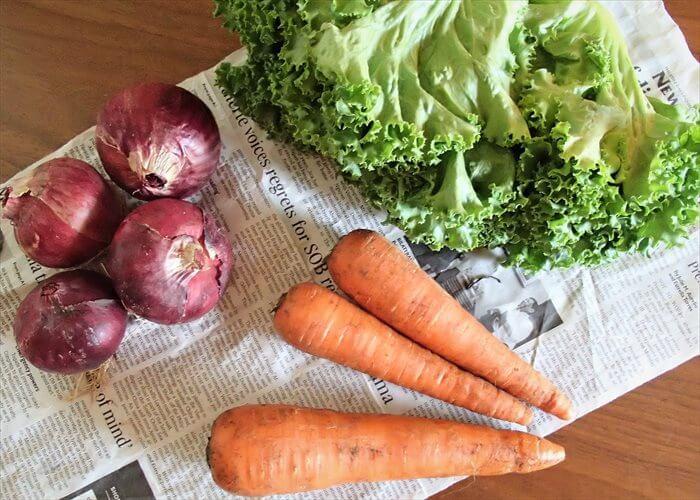 らでぃっしゅぼーやの有機野菜(実物)