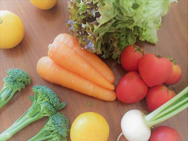 大地宅配の有機野菜(オーガニック野菜)