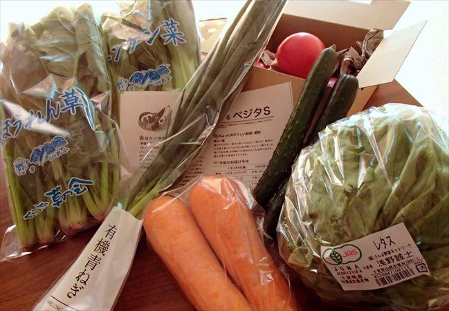 大地を守る会(旧:大地宅配)の野菜セット『ベジタ(S)』