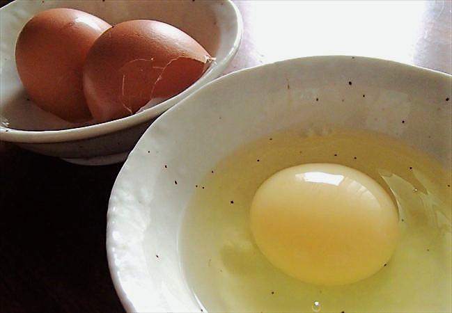 大地を守る会の卵