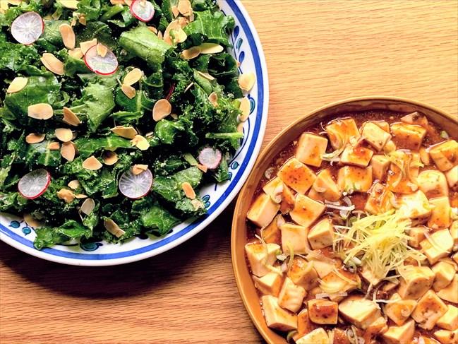 オイシックスお試しセット「おためし3days」3日目・ケールのチーズナッツサラダ、麻婆豆腐